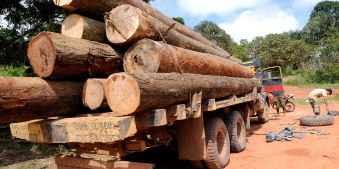 Polícia apreende em Sertânia caminhão que transportava madeira ilegalmente