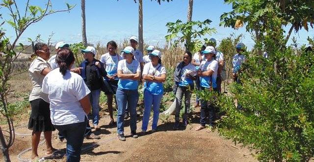 Jovens do Projeto Escola das Águas trocam experiências sobre quintais produtivos e manejo de Caatinga