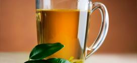 Anvisa suspende publicidade de chá digestivo Amargo