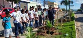 Em Tabira, secretarias de Cultura e Juventude e Meio Ambiente arborizam avenida