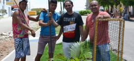 Em Tabira, Secretarias fazem parcerias para arborizar avenida