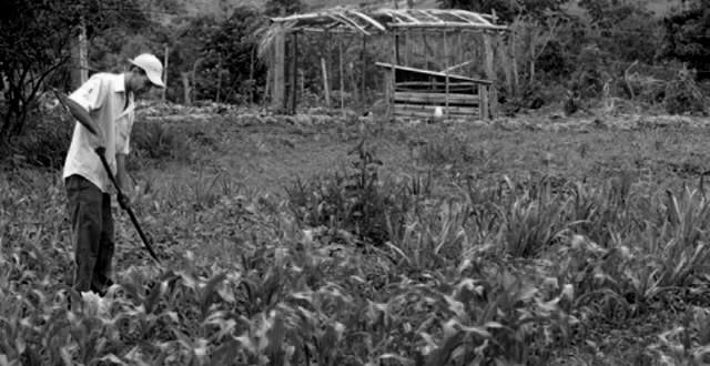 De 17 municípios do Pajeú apenas seis pagaram todas as parcelas do Garantia Safra 2014/2015