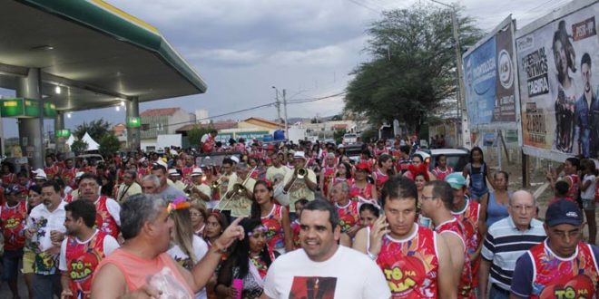 Resultado de imagem para carnaval 2017 afogados to na folia